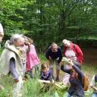 L'agenda de l'atelier des plantes sauvages