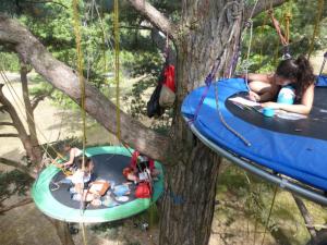 séjour dans les arbres